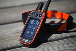Buzz Article: Track and Train your pooch with the Garmin Alpha