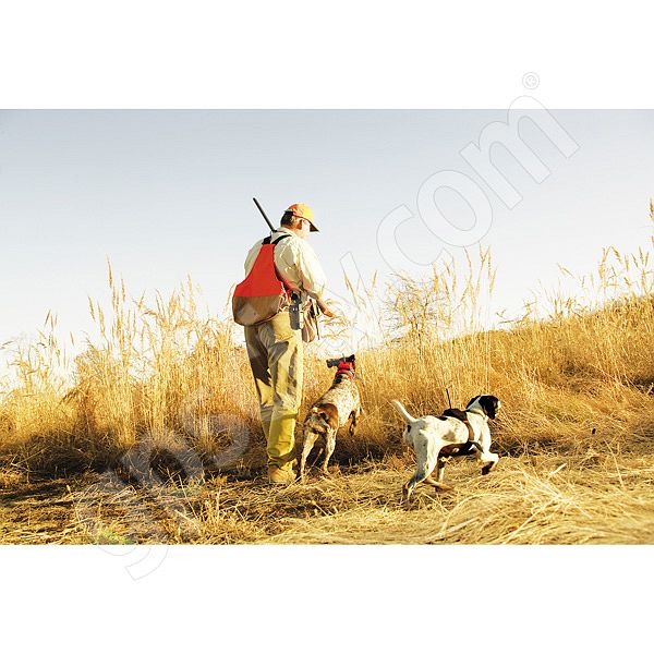 Garmin Astro 220 Hunting and Dog Tracking GPS Additional Photo #1