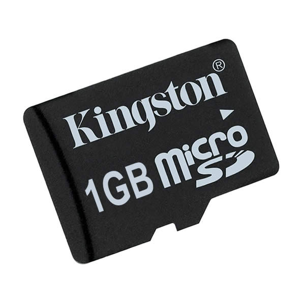 Kingston 1GB microSD Data Card with Adapter