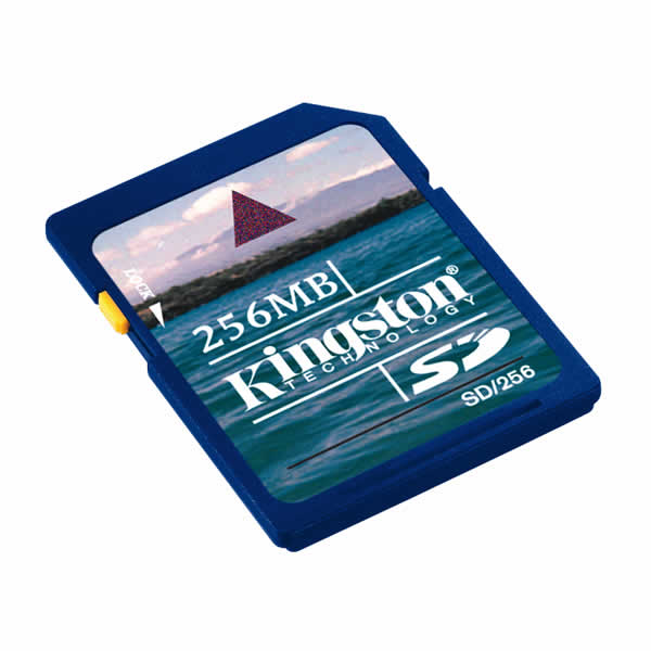 Kingston 256MB SD Data Card