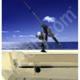 RAM Mount RAM-Rod Revolution Holder with Ball Adaptor and Tallon Flush Mount Receiver