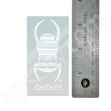 Geocaching 3 Inch Clear Travel Bug Decal