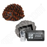Geocaching Pinecone Cache